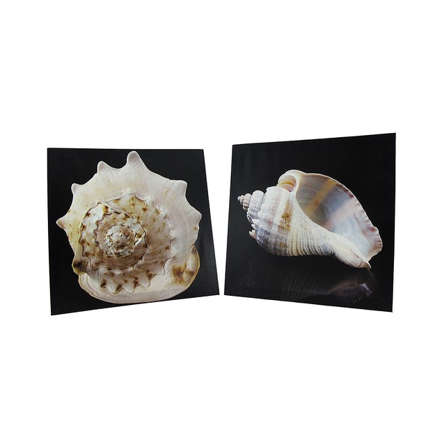Pair Of Seashell Printed Canvas Wall Hangings Prints