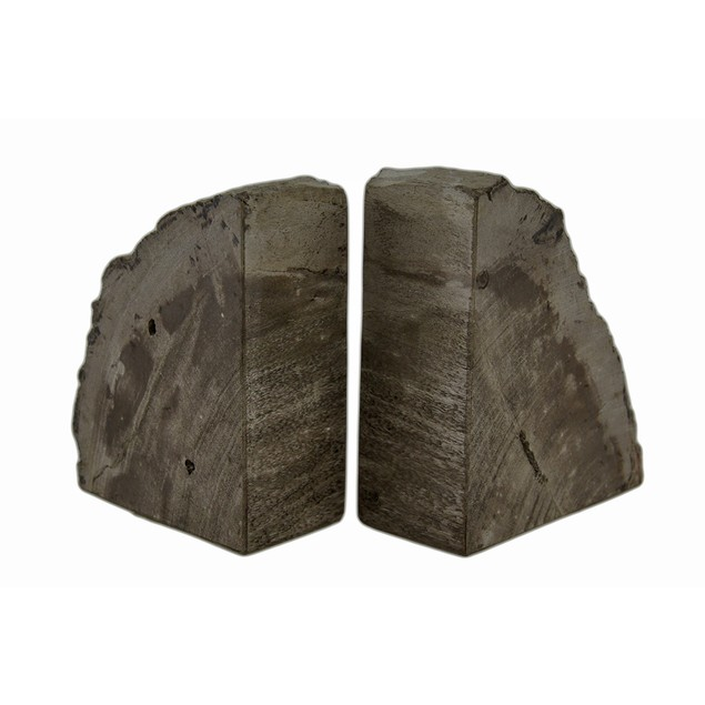 Indonesian Brown / Gray Petrified Wood Bookends Decorative Bookends