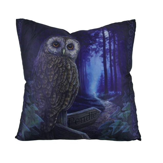 Lisa Parker 'Way Of The Witch' Decorative Fantasy Throw Pillows