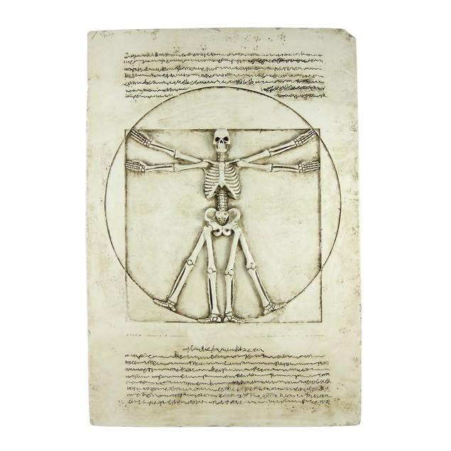 Vitruvian Man Skeleton Wall Plaque Gothic Decor Decorative Plaques