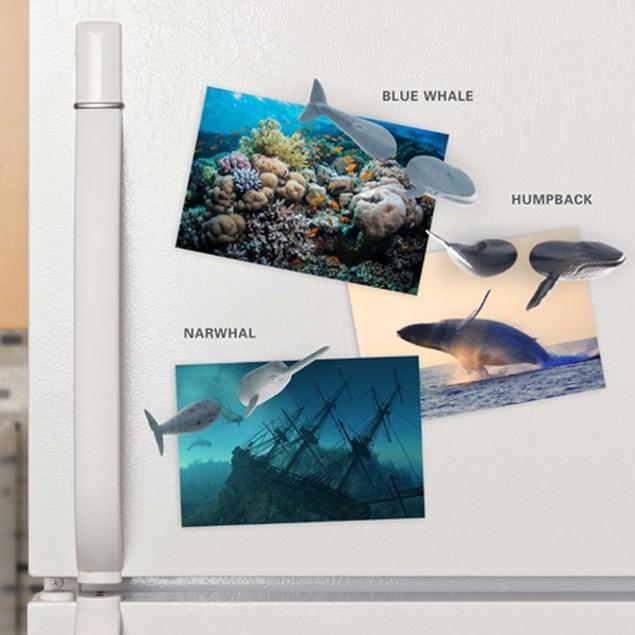 12-Piece Kikkerland Whale Magnets