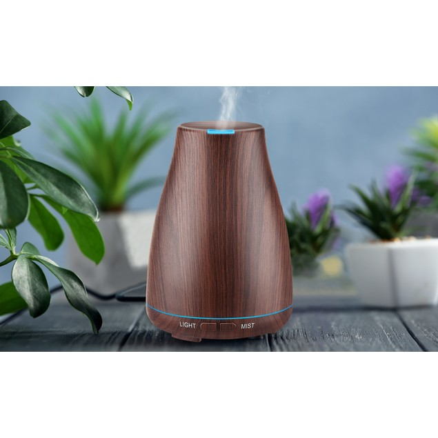 Aesthetics Ultrasonic Diffuser with 2 Essential Oils (3-Piece Set)