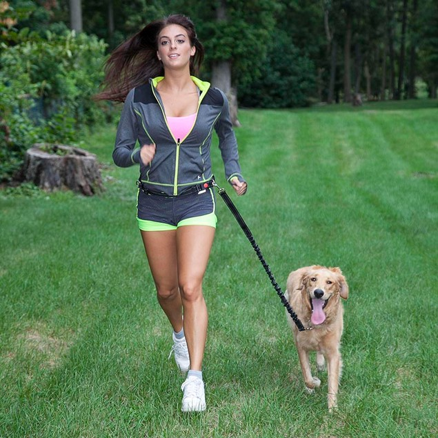 LucyBelle Pets Hands-Free Running Dog Leash