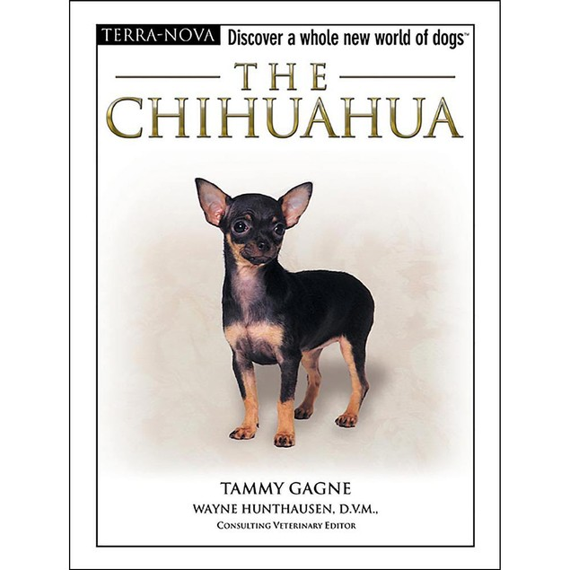 Terra Nova Chihuahua Book, Chihuahua by TFH Publications